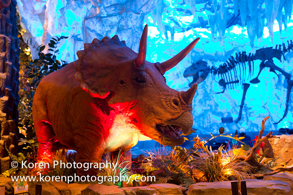 Triceratops magical memory maker for Disney dining plan t rex